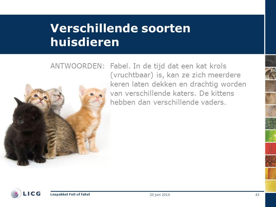 Verschillende soorten huisdieren ANTWOORDEN:Fabel.