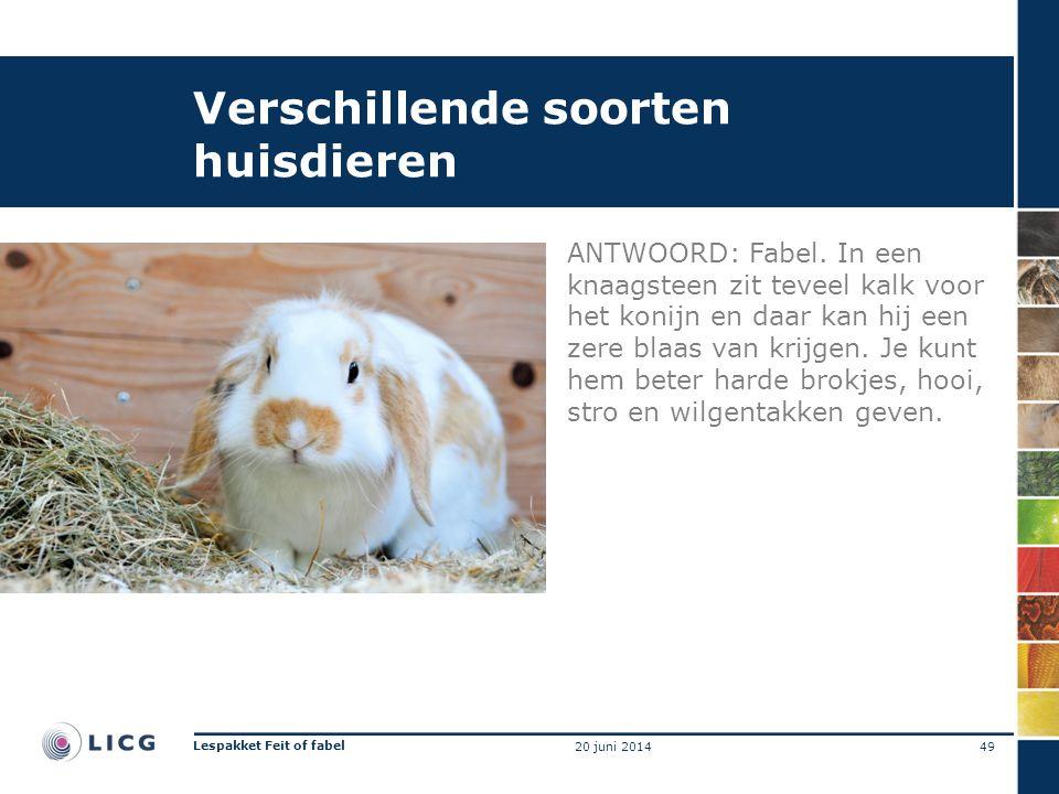 Verschillende soorten huisdieren ANTWOORD: Fabel. In een knaagsteen zit teveel kalk voor het konijn en daar kan hij een zere blaas van krijgen. Je kun