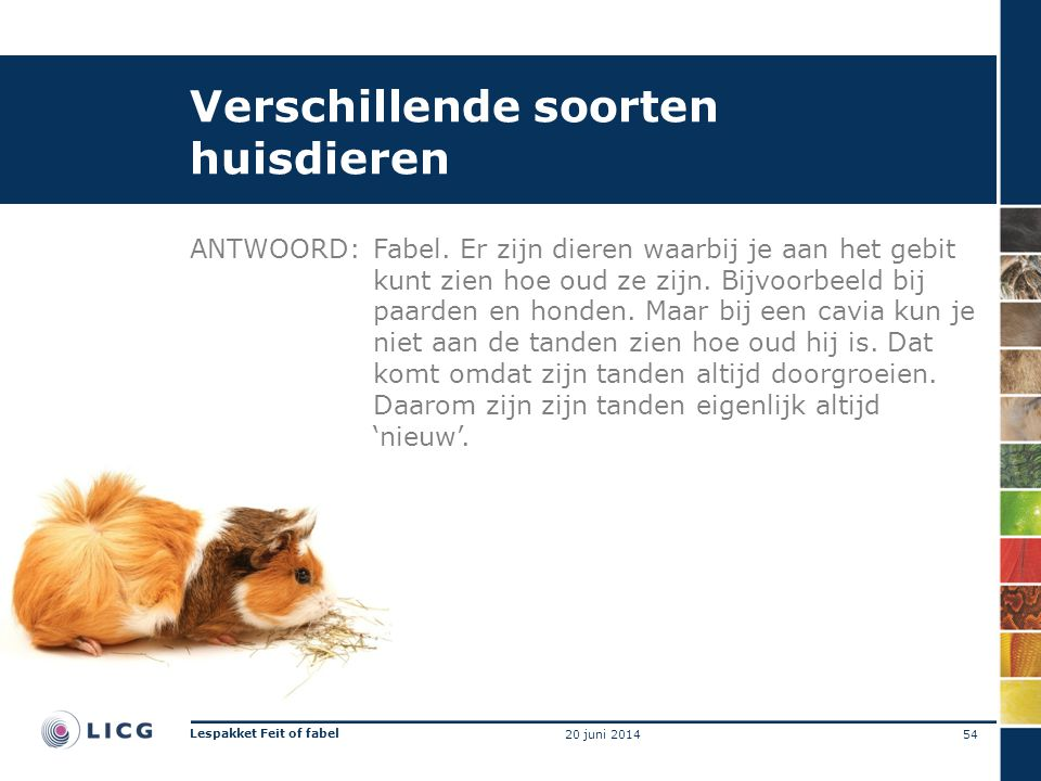 Verschillende soorten huisdieren ANTWOORD:Fabel. Er zijn dieren waarbij je aan het gebit kunt zien hoe oud ze zijn. Bijvoorbeeld bij paarden en honden