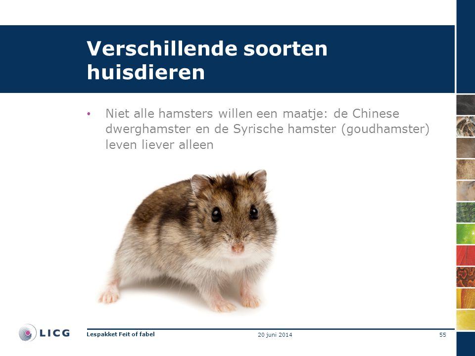 Verschillende soorten huisdieren • Niet alle hamsters willen een maatje: de Chinese dwerghamster en de Syrische hamster (goudhamster) leven liever alleen 55 Lespakket Feit of fabel 20 juni 2014