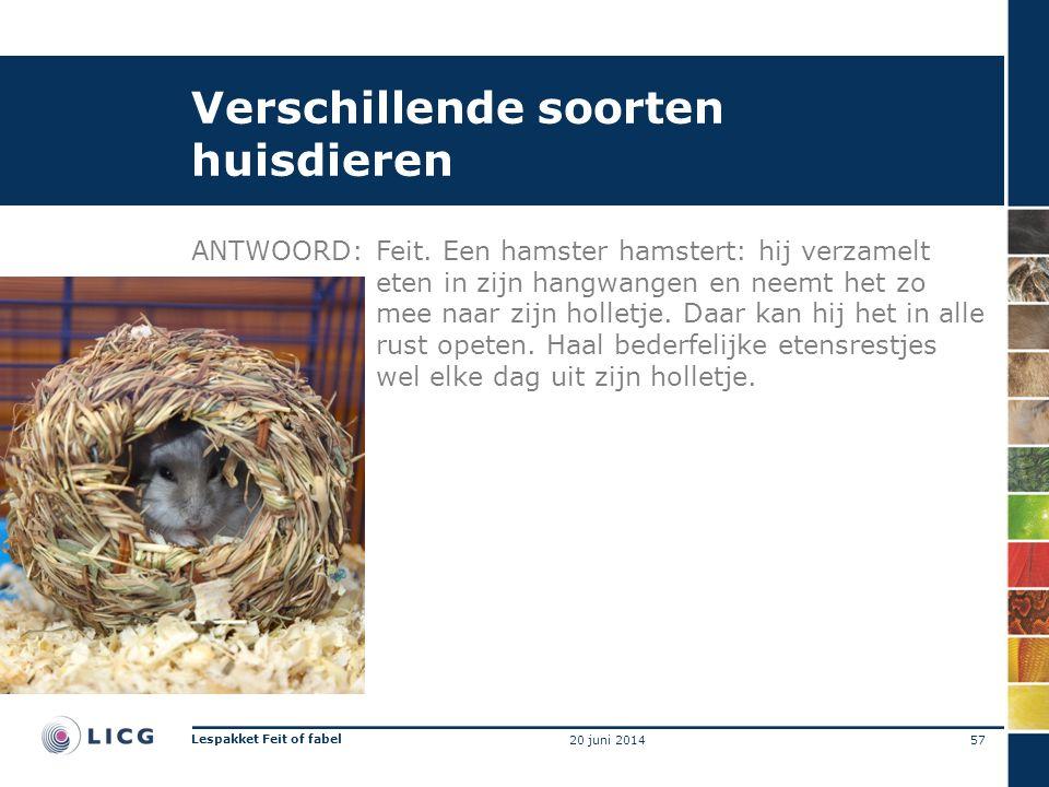 Verschillende soorten huisdieren ANTWOORD:Feit. Een hamster hamstert: hij verzamelt eten in zijn hangwangen en neemt het zo mee naar zijn holletje. Da