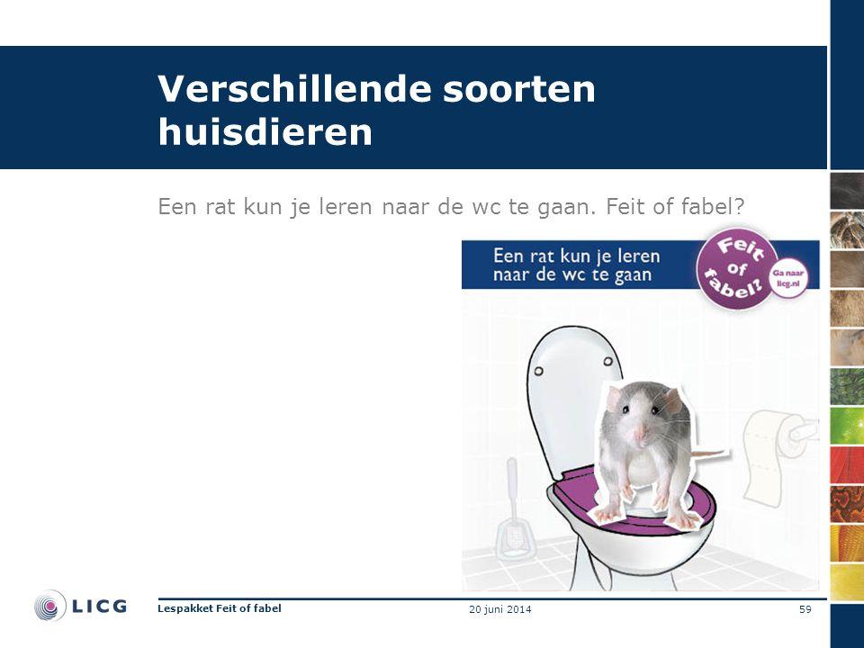 Verschillende soorten huisdieren Een rat kun je leren naar de wc te gaan. Feit of fabel? 59 Lespakket Feit of fabel 20 juni 2014