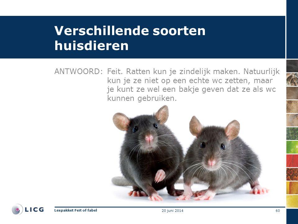 Verschillende soorten huisdieren ANTWOORD:Feit. Ratten kun je zindelijk maken. Natuurlijk kun je ze niet op een echte wc zetten, maar je kunt ze wel e
