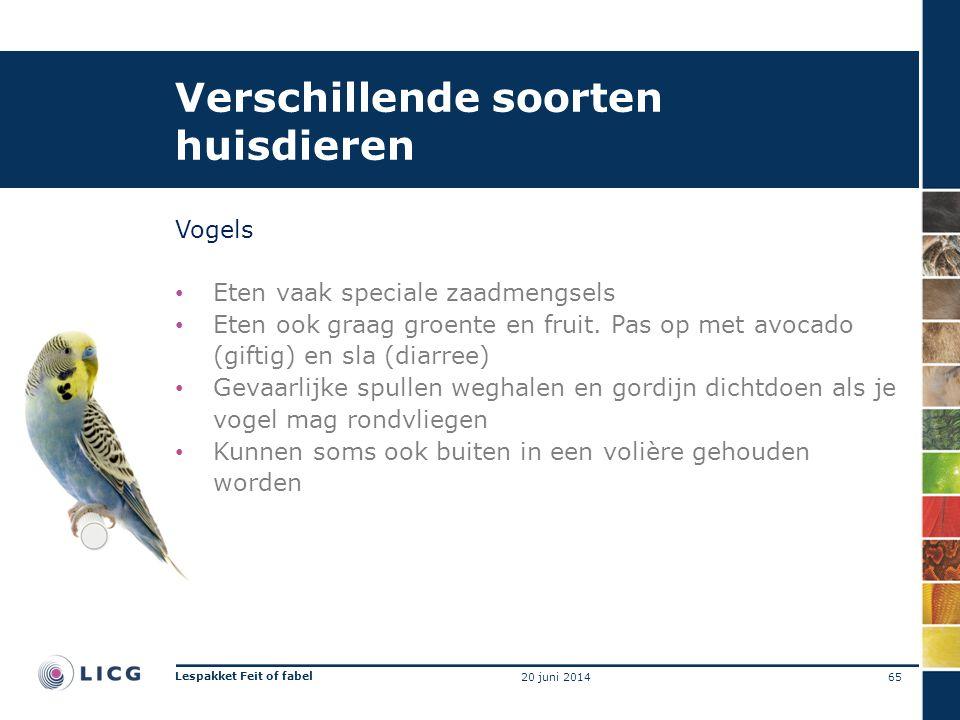 Verschillende soorten huisdieren Vogels • Eten vaak speciale zaadmengsels • Eten ook graag groente en fruit. Pas op met avocado (giftig) en sla (diarr