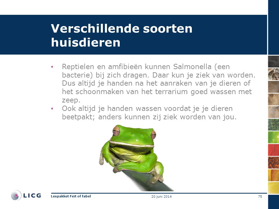 Verschillende soorten huisdieren • Reptielen en amfibieën kunnen Salmonella (een bacterie) bij zich dragen. Daar kun je ziek van worden. Dus altijd je