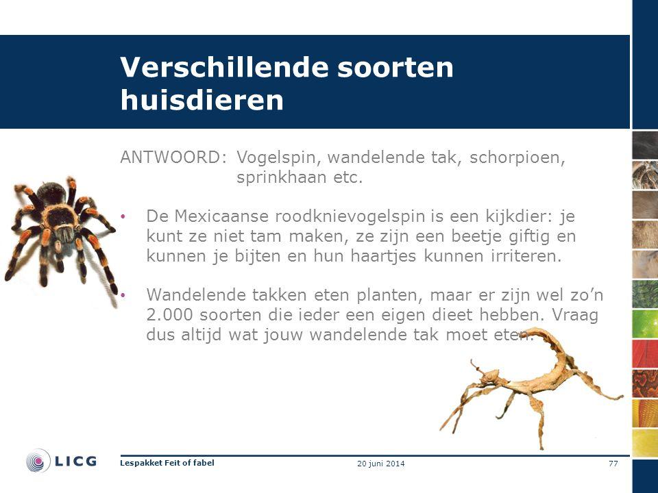 Verschillende soorten huisdieren ANTWOORD:Vogelspin, wandelende tak, schorpioen, sprinkhaan etc. • De Mexicaanse roodknievogelspin is een kijkdier: je