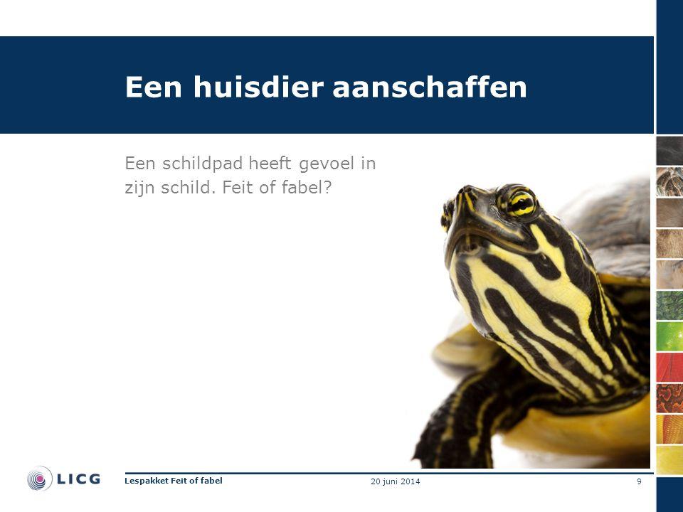 Een huisdier aanschaffen Een schildpad heeft gevoel in zijn schild. Feit of fabel? 9 Lespakket Feit of fabel 20 juni 2014