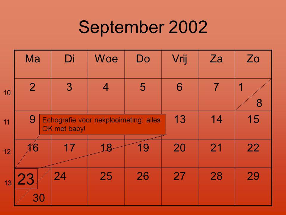 September 2002 MaDiWoeDoVrijZaZo 2345671 8 9101112131415 16171819202122 23 30 24 2526272829 Echografie voor nekplooimeting: alles OK met baby! 10 11 1