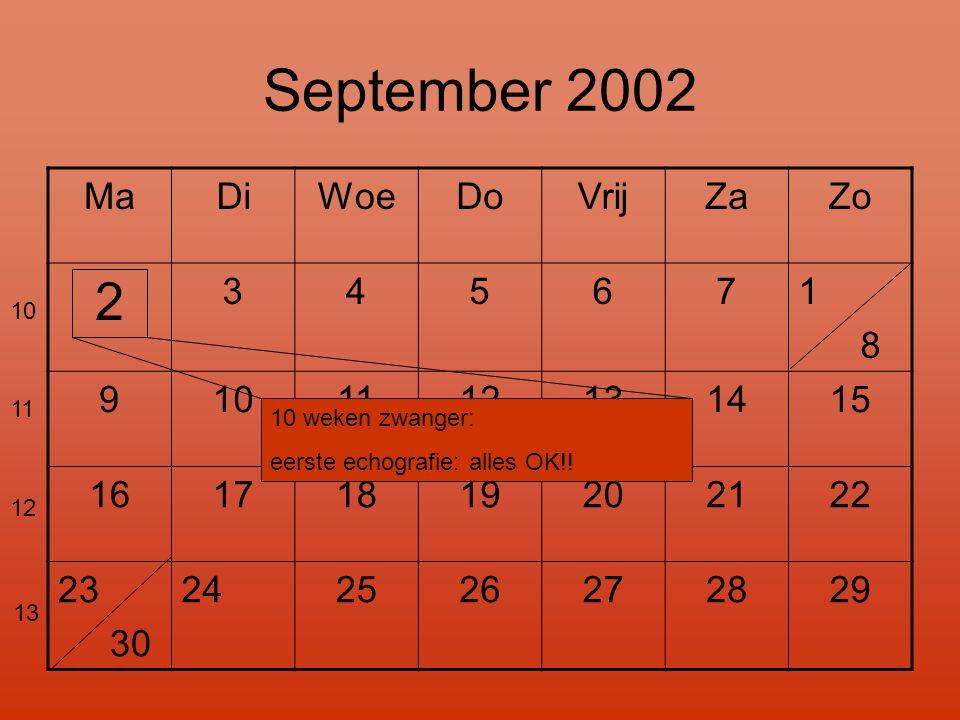 September 2002 MaDiWoeDoVrijZaZo 2 345671 8 9101112131415 16171819202122 23 30 24 2526272829 10 11 12 13 10 weken zwanger: eerste echografie: alles OK