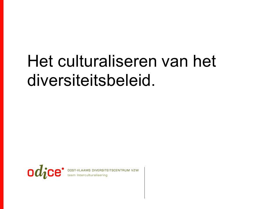 Het culturaliseren van het diversiteitsbeleid.