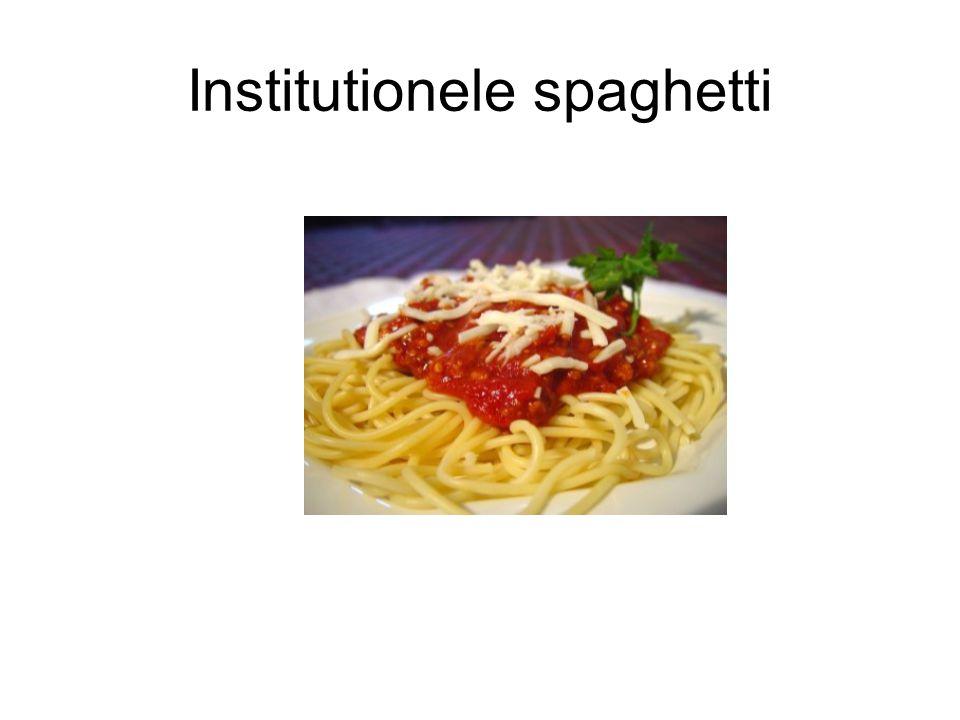 Institutionele spaghetti