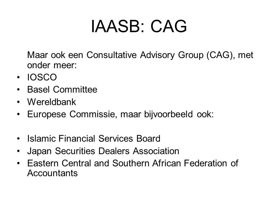IAASB: CAG Maar ook een Consultative Advisory Group (CAG), met onder meer: •IOSCO •Basel Committee •Wereldbank •Europese Commissie, maar bijvoorbeeld