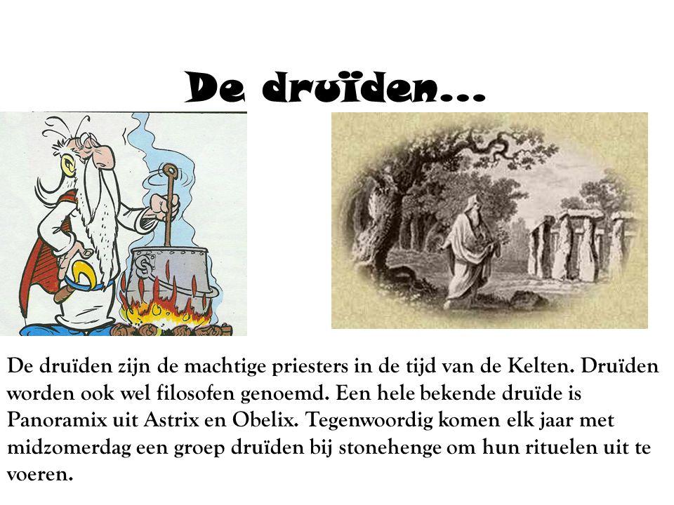 De druïden… De druïden zijn de machtige priesters in de tijd van de Kelten.
