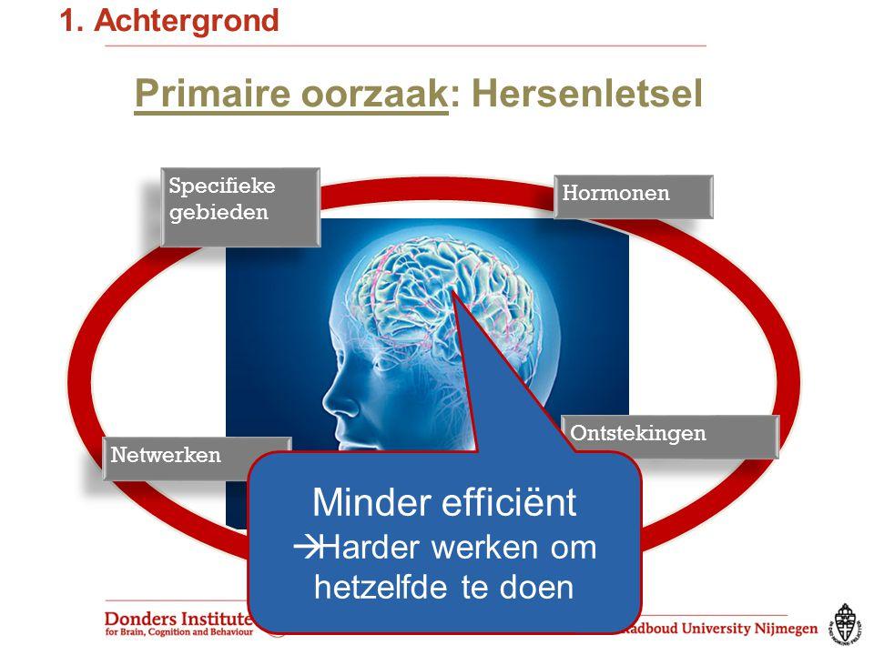 Primaire oorzaak: Hersenletsel Specifieke gebieden Hormonen Ontstekingen Netwerken 1.