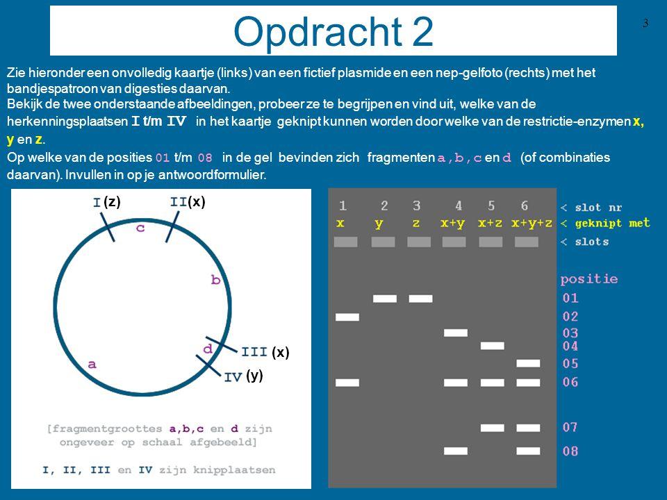 4 Over pBR  15 pBR  15 DNA, het recombinante plasmide dat gecontroleerd moet worden, is opgestuurd door een bevriende onderzoeker.