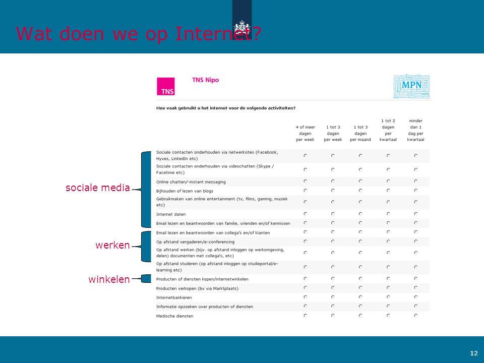 Ministerie van Verkeer en Waterstaat 12 sociale media winkelen werken Wat doen we op Internet?