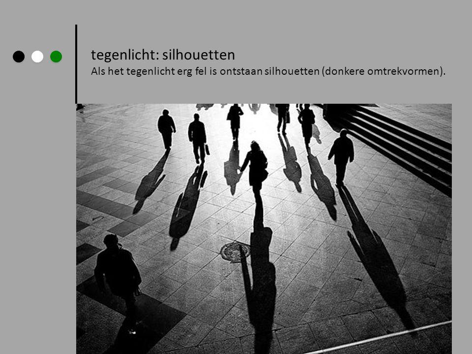 tegenlicht: silhouetten Als het tegenlicht erg fel is ontstaan silhouetten (donkere omtrekvormen).