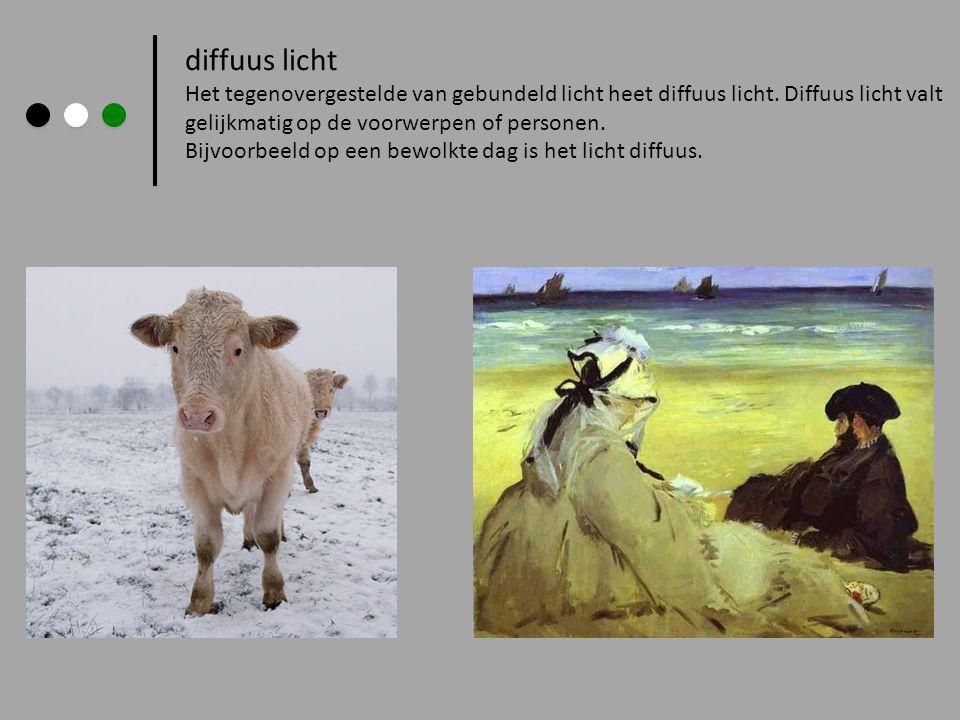 diffuus licht Het tegenovergestelde van gebundeld licht heet diffuus licht. Diffuus licht valt gelijkmatig op de voorwerpen of personen. Bijvoorbeeld