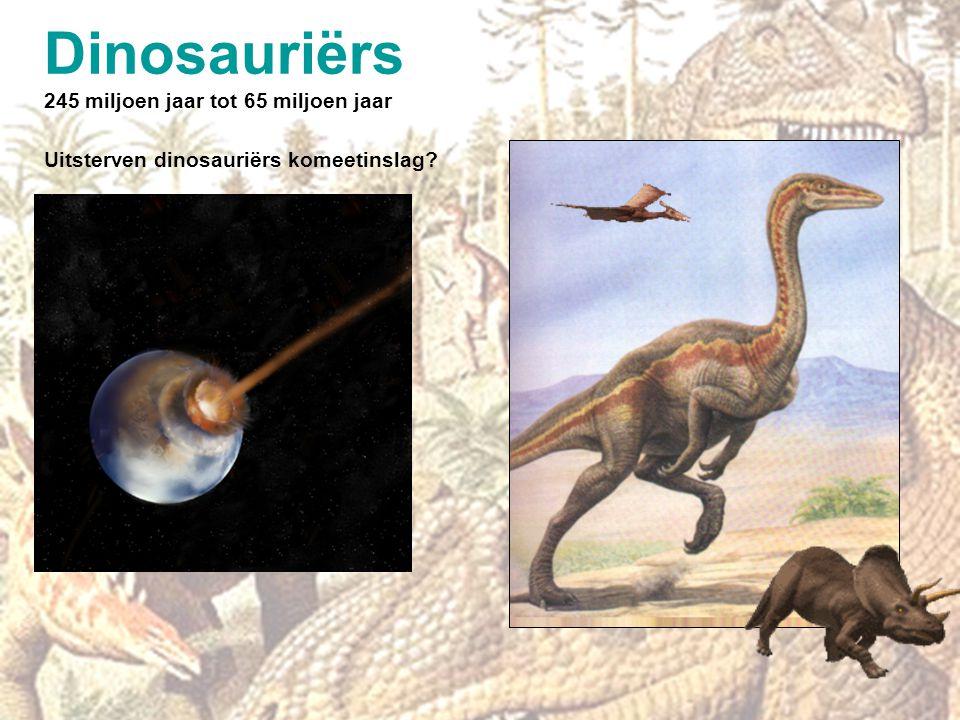 Voet aan wal Vissen 400 miljoen jaar Amfibieën & reptielen 300 miljoen jaar Zoogdieren 200 miljoen jaar Vogels 150 miljoen jaar