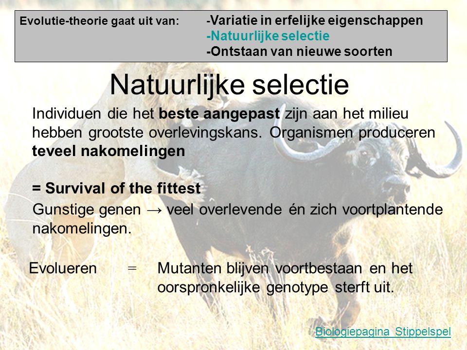Variatie in erfelijke eigenschappen Geslachtelijke voortplanting Mutaties Nieuwe paren/recombinaties van bestaande genen/eigenschappen Plotselinge ver