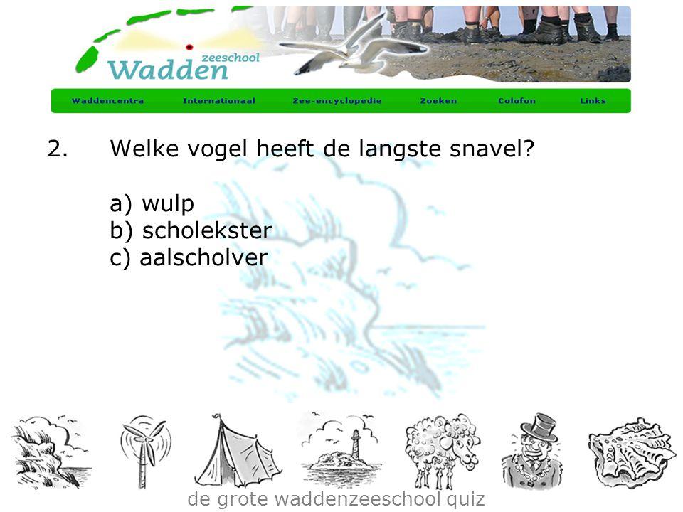 de grote waddenzeeschool quiz 2.Welke vogel heeft de langste snavel? a) wulp b) scholekster c) aalscholver