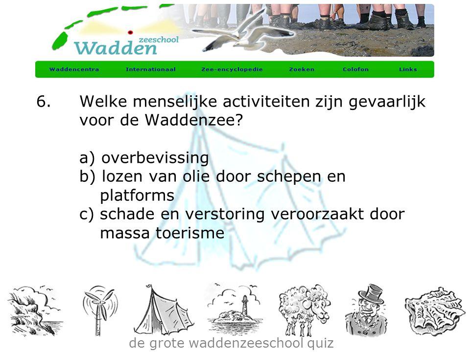 de grote waddenzeeschool quiz 6.Welke menselijke activiteiten zijn gevaarlijk voor de Waddenzee? a) overbevissing b) lozen van olie door schepen en pl