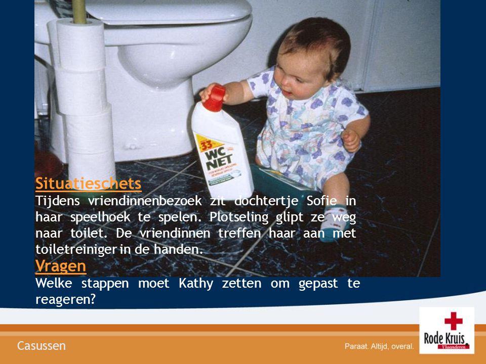 Situatieschets Tijdens vriendinnenbezoek zit dochtertje Sofie in haar speelhoek te spelen. Plotseling glipt ze weg naar toilet. De vriendinnen treffen