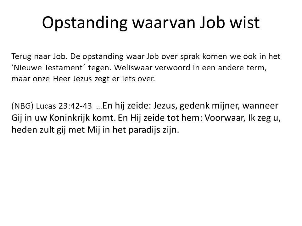 Opstanding waarvan Job wist Terug naar Job. De opstanding waar Job over sprak komen we ook in het 'Nieuwe Testament' tegen. Weliswaar verwoord in een
