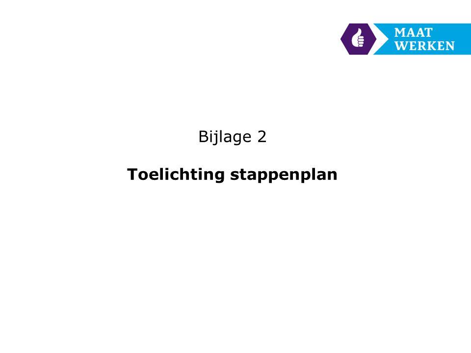 Bijlage 2 Toelichting stappenplan