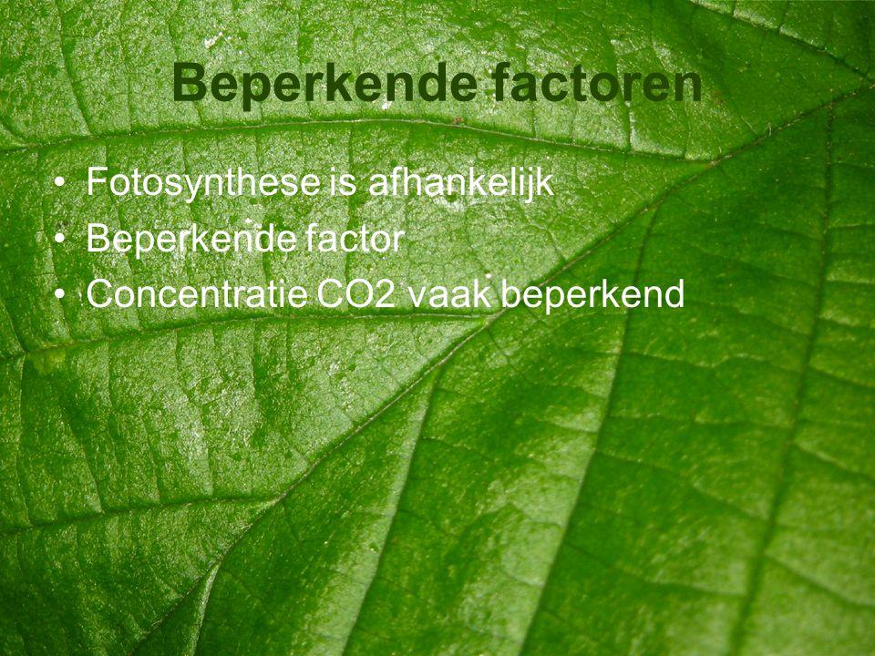 Beperkende factoren •Fotosynthese is afhankelijk •Beperkende factor •Concentratie CO2 vaak beperkend