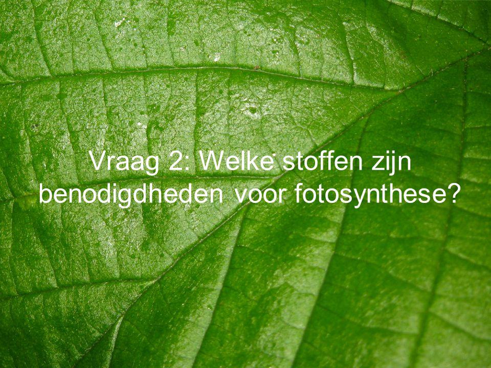 Vraag 2: Welke stoffen zijn benodigdheden voor fotosynthese?