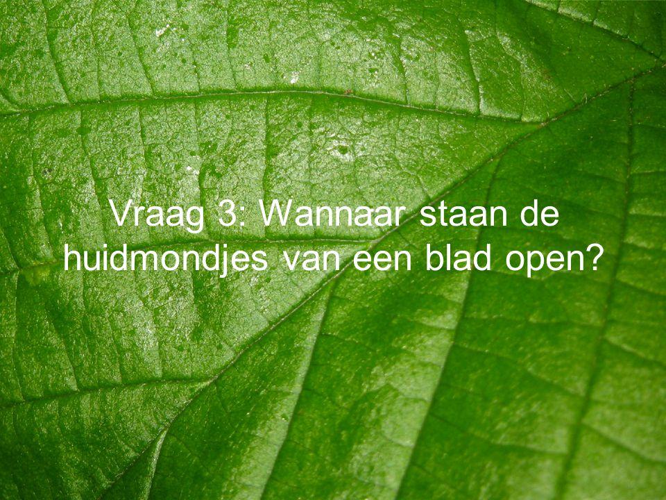 Vraag 3: Wannaar staan de huidmondjes van een blad open?