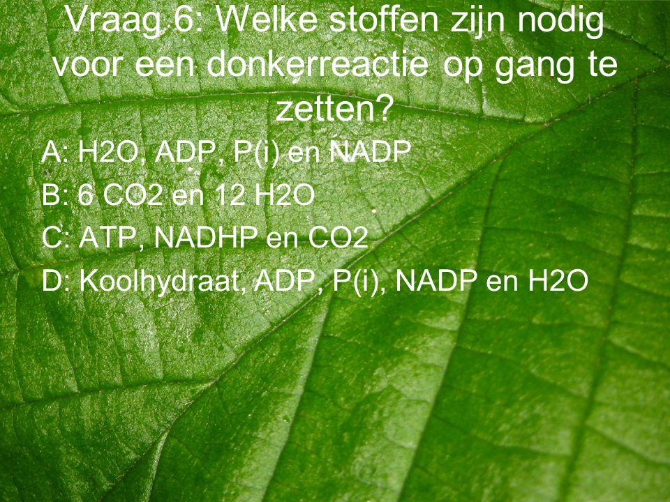 Vraag 6: Welke stoffen zijn nodig voor een donkerreactie op gang te zetten? A: H2O, ADP, P(i) en NADP B: 6 CO2 en 12 H2O C: ATP, NADHP en CO2 D: Koolh
