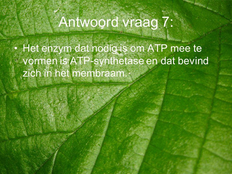 Antwoord vraag 7: •Het enzym dat nodig is om ATP mee te vormen is ATP-synthetase en dat bevind zich in het membraam.