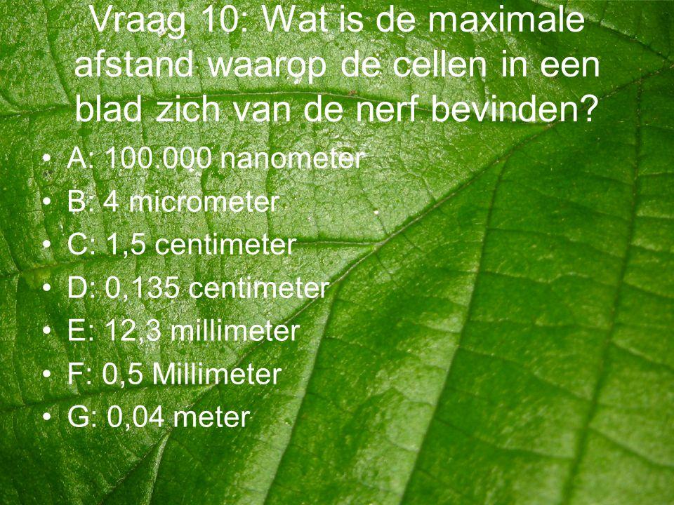 Vraag 10: Wat is de maximale afstand waarop de cellen in een blad zich van de nerf bevinden? •A: 100.000 nanometer •B: 4 micrometer •C: 1,5 centimeter