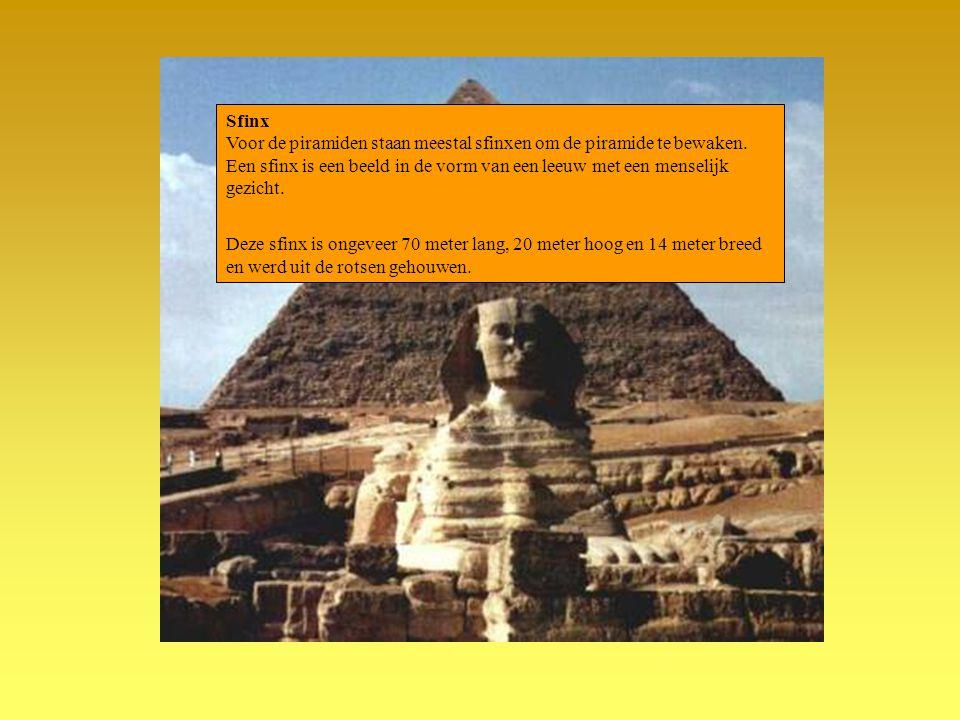 Sfinx Voor de piramiden staan meestal sfinxen om de piramide te bewaken. Een sfinx is een beeld in de vorm van een leeuw met een menselijk gezicht. De
