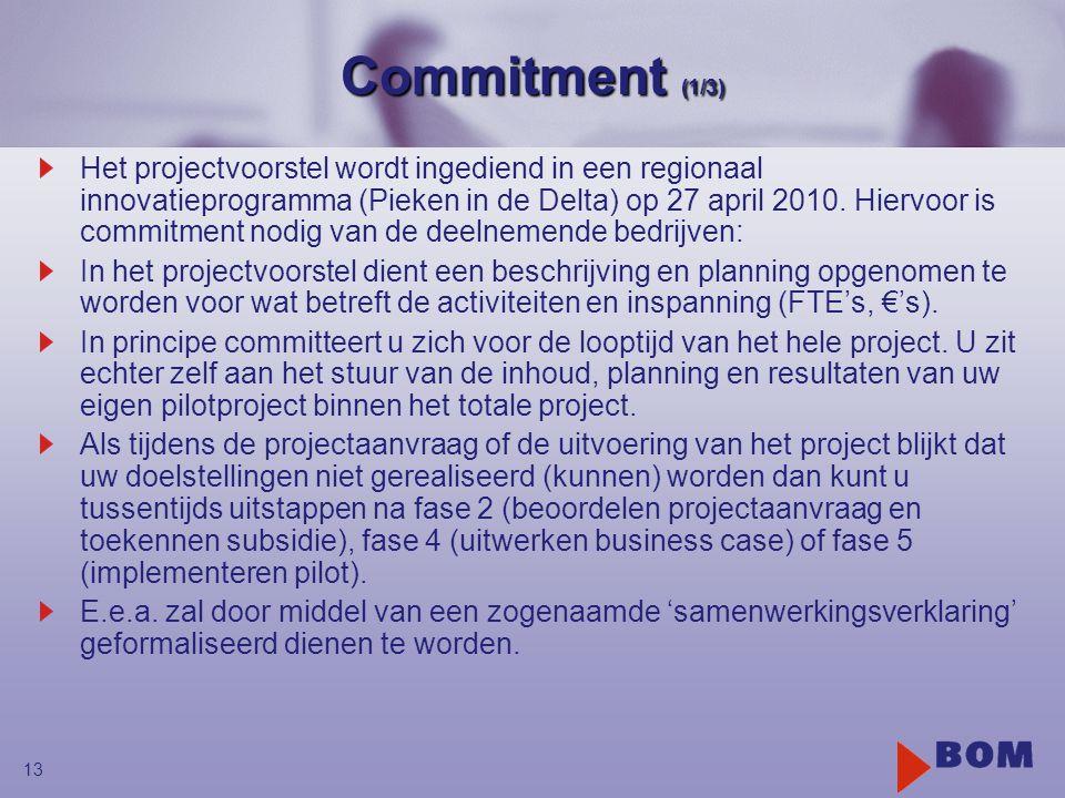 13 Commitment (1/3) Het projectvoorstel wordt ingediend in een regionaal innovatieprogramma (Pieken in de Delta) op 27 april 2010. Hiervoor is commitm
