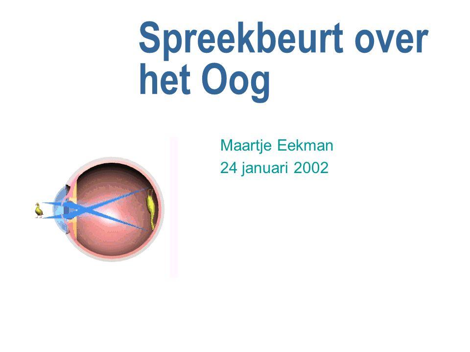 Spreekbeurt over het Oog Maartje Eekman 24 januari 2002