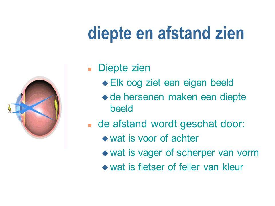 diepte en afstand zien n Diepte zien u Elk oog ziet een eigen beeld u de hersenen maken een diepte beeld n de afstand wordt geschat door: u wat is voo