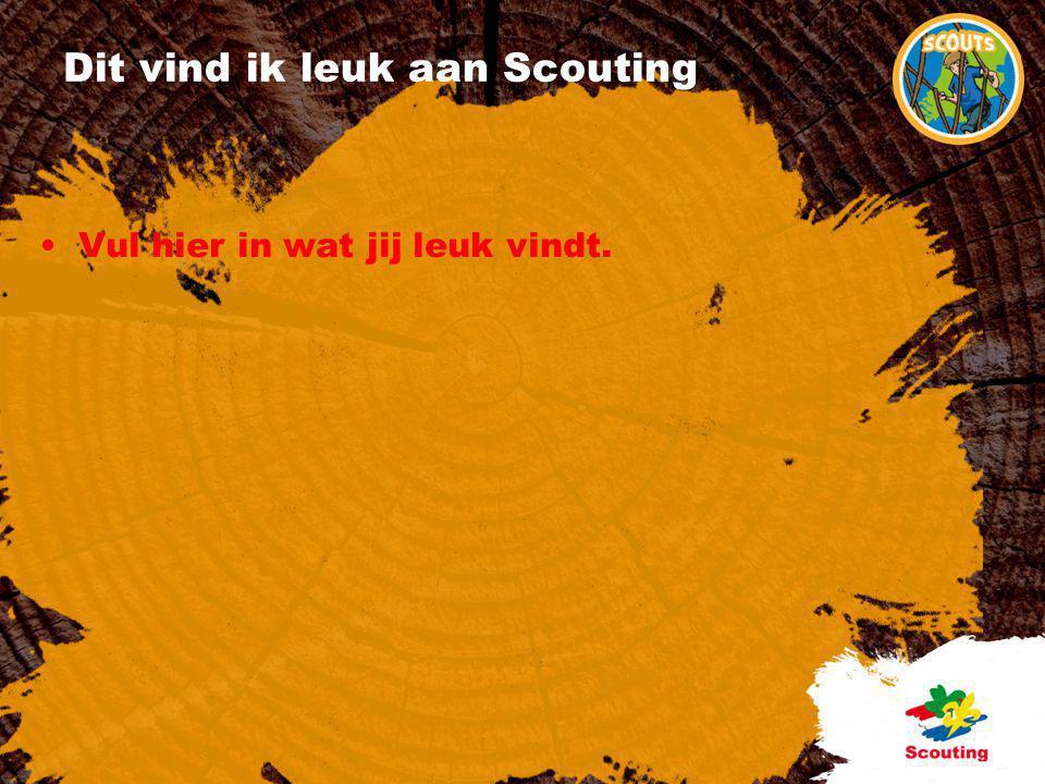 Dit vind ik leuk aan Scouting •Vul hier in wat jij leuk vindt.