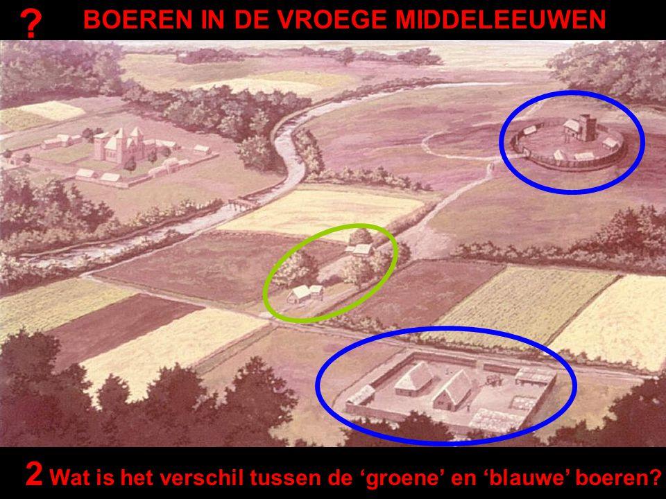 BOEREN IN DE VROEGE MIDDELEEUWEN ? 2 Wat is het verschil tussen de 'groene' en 'blauwe' boeren?