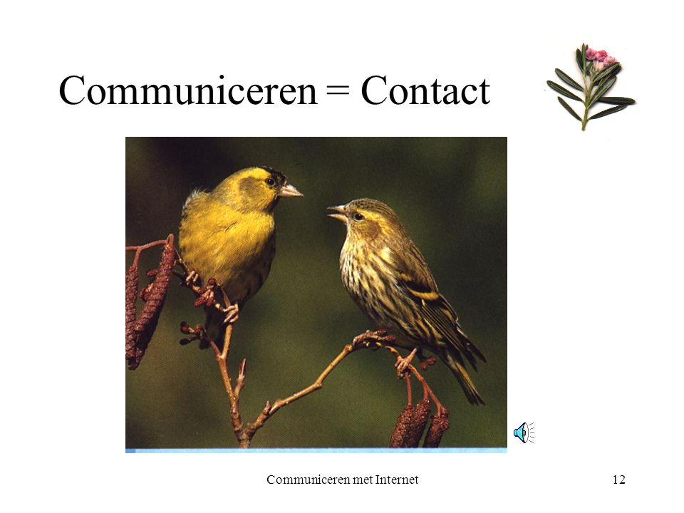 Communiceren met Internet12 Communiceren = Contact