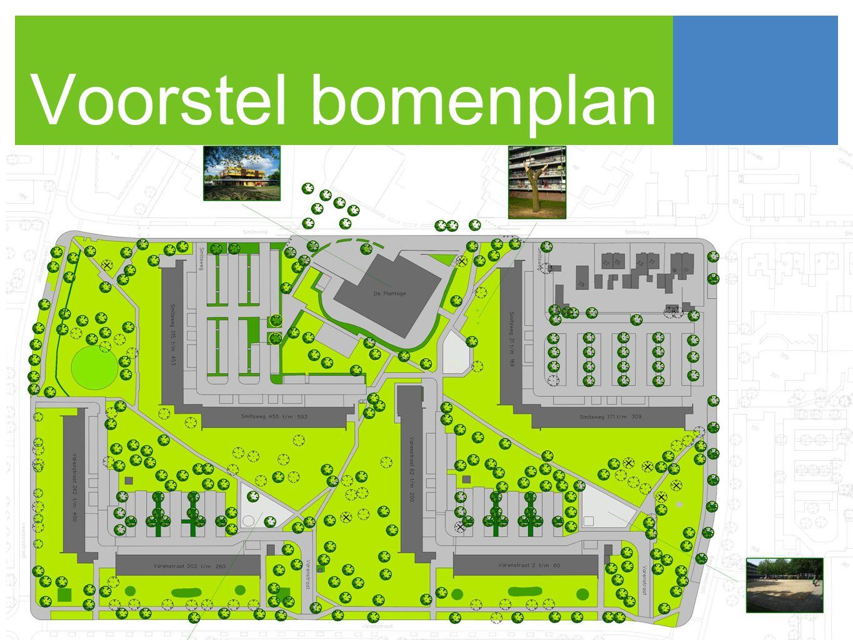 Voorstel bomenplan •nu volgen een aantal slides over de kaart (die doen Debby en/of Marlein, ik sla die nu even over ivm briefing Jannelie
