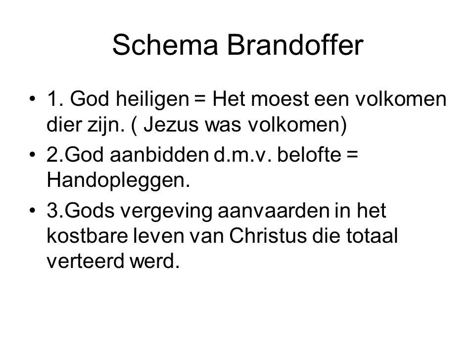 Schema Brandoffer •1.God heiligen = Het moest een volkomen dier zijn.