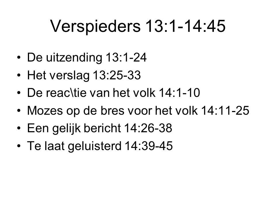 Verspieders 13:1-14:45 •De uitzending 13:1-24 •Het verslag 13:25-33 •De reac\tie van het volk 14:1-10 •Mozes op de bres voor het volk 14:11-25 •Een gelijk bericht 14:26-38 •Te laat geluisterd 14:39-45