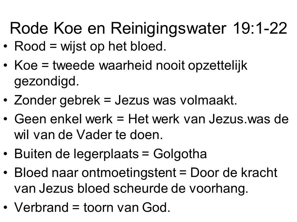 Rode Koe en Reinigingswater 19:1-22 •Rood = wijst op het bloed.