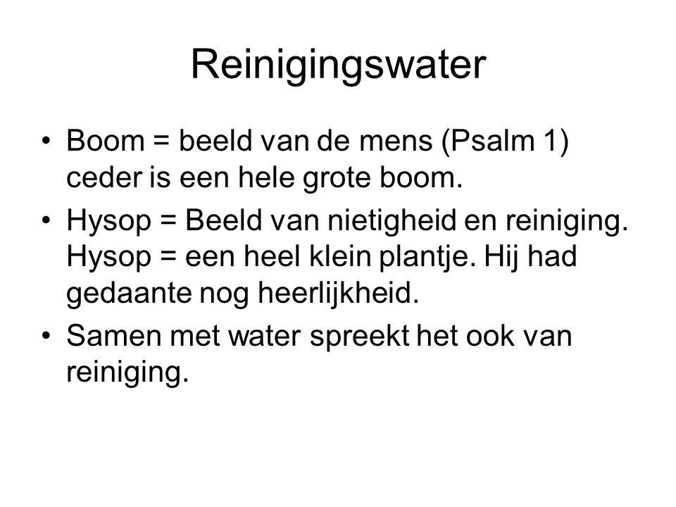 Reinigingswater •Boom = beeld van de mens (Psalm 1) ceder is een hele grote boom.