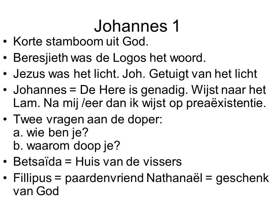 Johannes 1 •Korte stamboom uit God.•Beresjieth was de Logos het woord.