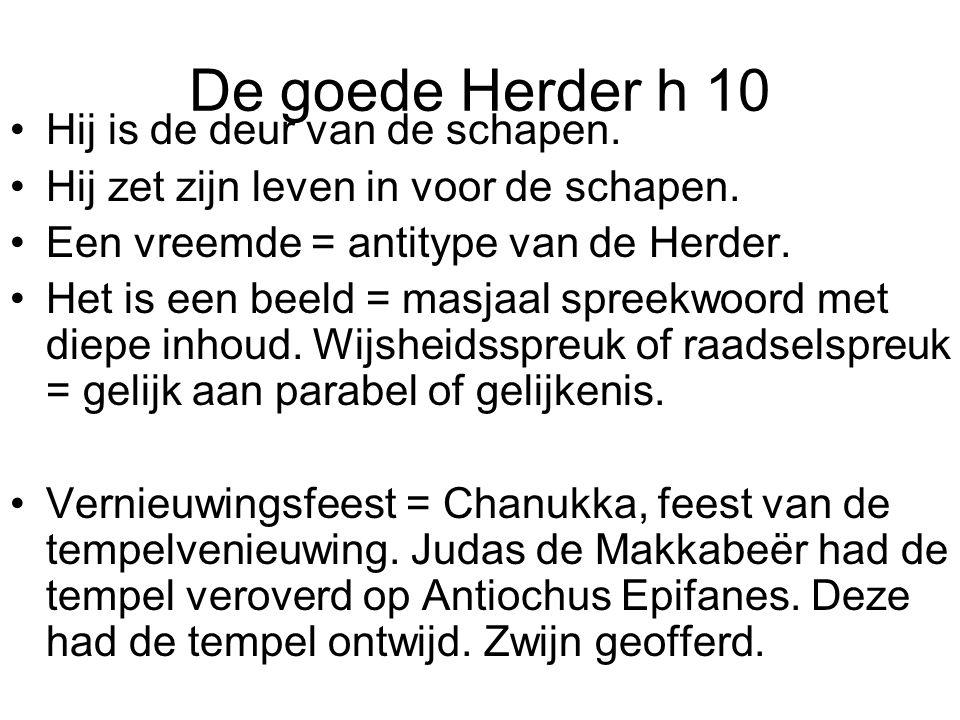De goede Herder h 10 •Hij is de deur van de schapen.