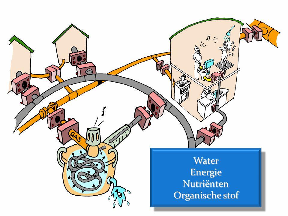 WaterEnergieNutriënten Organische stof